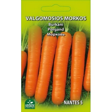 VALGOMOSIOS MORKOS NANTES 5
