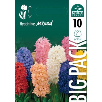 HIACINTAI BIG PACK MIX (10...