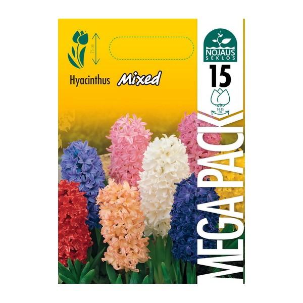 HIACINTAI MEGA PACK MIX (15 vnt.)