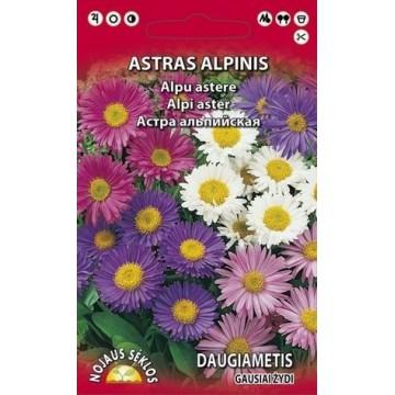 ASTRAS ALPINIS DAUGIAMETIS