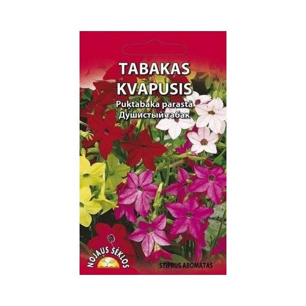 TABAKAS KVAPUSIS