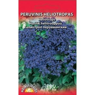 PERUVINIS HELIOTROPAS
