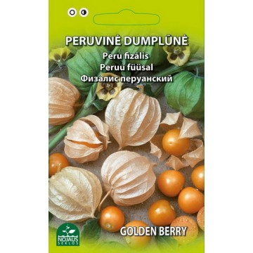 PERUVINĖ DUMPLŪNĖ GOLDEN BERRY