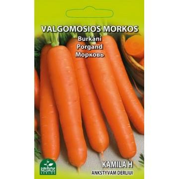 VALGOMOSIOS MORKOS KAMILA H