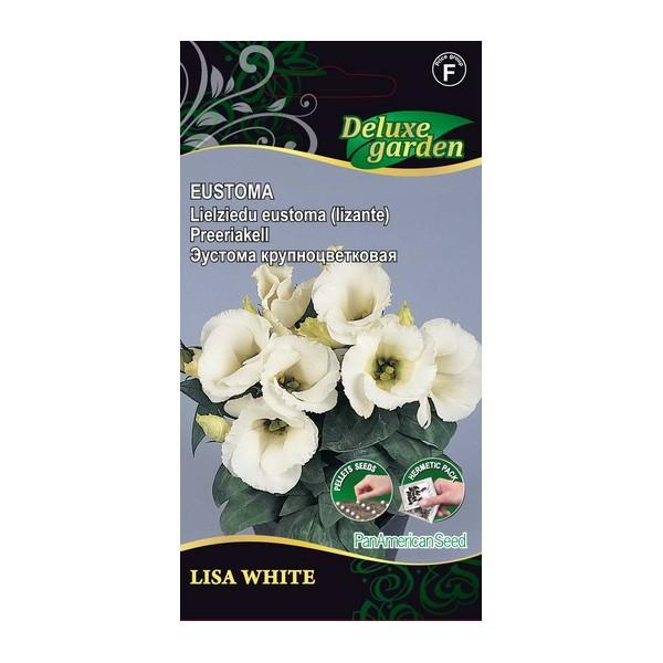 EUSTOMA LISA WHITE