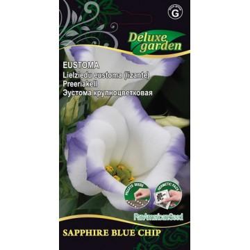 EUSTOMA SAPPHIRE BLUE CHIP