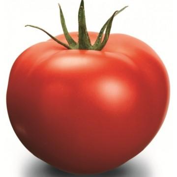 Pomidorai Delfine H 10s