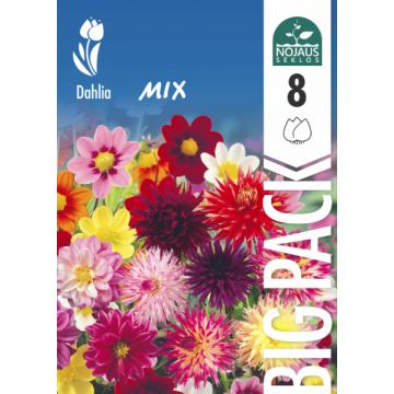Jurginai Mix BIG PACK 8 sv.