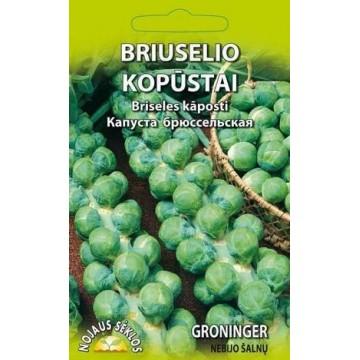 BRIUSELIO KOPŪSTAI GRONINGER