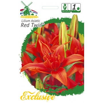 EXCLUSIVE LELIJOS RED TWIN