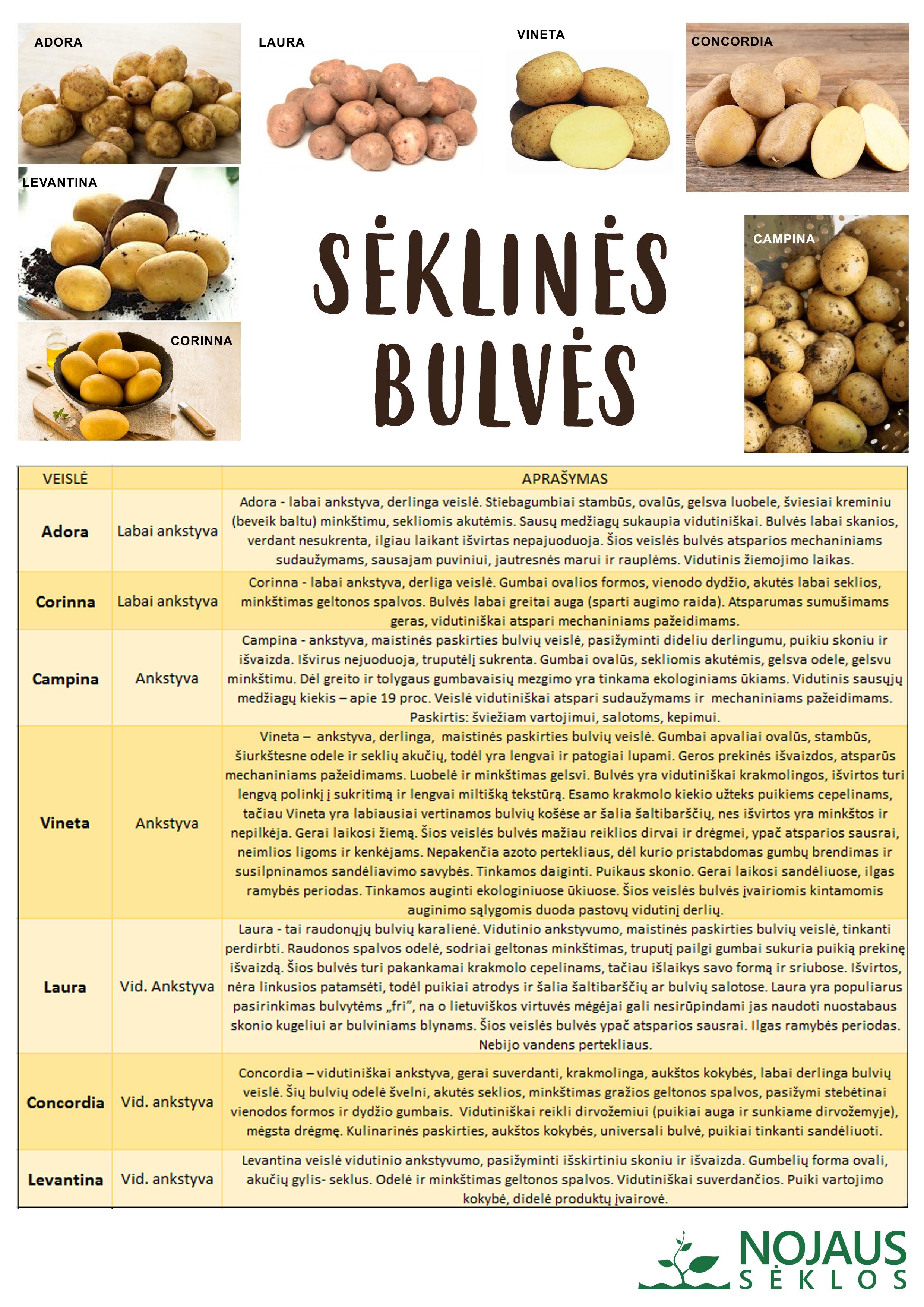 Sėklinių bulvių palyginimo lentelė